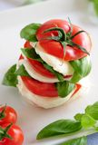 Caprese Royalty Free Stock Images