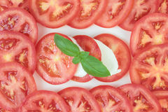 Caprese salad. Royalty Free Stock Photo