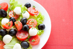 Caprese salad with tomato and mozzarella cheese on a white plate Royalty Free Stock Images