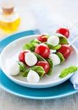 Caprese salad. Tomato mozzarella sticks Royalty Free Stock Photography