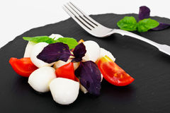 Caprese salad of tomatoes, basil, mozzarella, pepper. Studio Photo Royalty Free Stock Photo