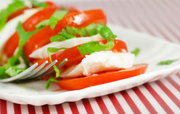 Caprese salad with tomatoes and buffalo mozzarella Royalty Free Stock Images