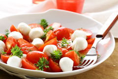 Caprese salad with  tomatoes and mozzarella Royalty Free Stock Photography