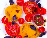 Caprese salad with tomatoes, mozzarella and basil. Royalty Free Stock Image