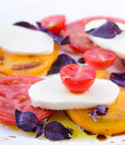 Caprese salad with tomatoes, mozzarella and basil. Royalty Free Stock Photography