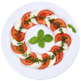 Caprese salad with tomatoes and mozzarella cheese from above Royalty Free Stock Photos