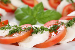 Caprese salad with tomatoes and mozzarella cheese Royalty Free Stock Image