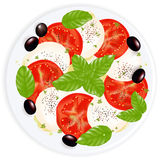 Caprese Salad. Vector Stock Image