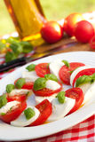 Caprese salad on white plate Stock Photos