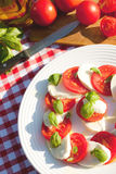 Caprese salad on white plate Royalty Free Stock Image