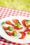 Caprese salad on white plate Royalty Free Stock Photography