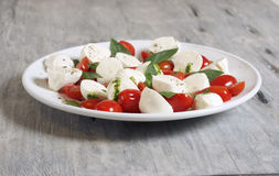 Caprese salad on a white plate. Food & Dishes for Restaurants, Cuisine of the peoples of the world, Healthy Recipes Royalty Free Stock Photos