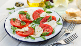 Caprese salad on a white plate Royalty Free Stock Photos