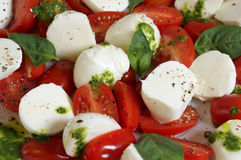 Caprese salad on a white platel. Food & Dishes for Restaurants, Cuisine of the peoples of the world, Healthy Recipes Royalty Free Stock Photo