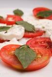 Caprese Salat Lizenzfreies Stockfoto