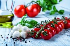 Caprese Salat Lizenzfreie Stockfotos