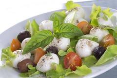 Caprese Salat Stockfotos