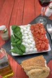 Caprese-Salat oben übrig geblieben Lizenzfreies Stockfoto