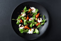 Caprese sallad med mozzarellaen, tomaten, basilika och balsamic vinäger som är ordnade på den svarta plattan och mörkerbakgrund T Royaltyfri Bild