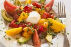 Caprese sallad med ost, tomaten och avokadot Fotografering för Bildbyråer