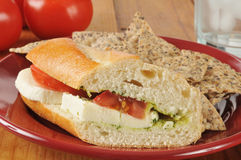 Caprese sandwich Royalty Free Stock Images