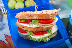 Caprese sandwich for school Stock Images