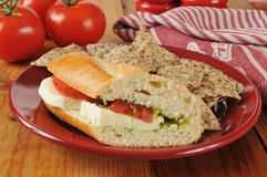 Caprese sandwich with tortilla chips Royalty Free Stock Photo
