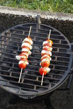 Caprese skewers on grill Royalty Free Stock Images