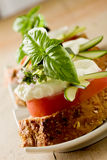 Caprese starter Royalty Free Stock Image