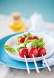 Caprese sticks. Caprese salad - tomato mozzarella sticks Royalty Free Stock Image
