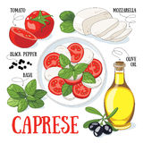 Caprese. Traditional italian salad and its ingredients. Mediterranean cuisine stock image