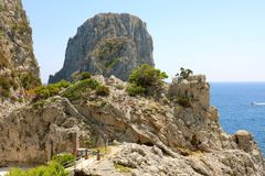 Capri Faraglioni view between trees branches, Capri Island, Italy royalty free stock photos
