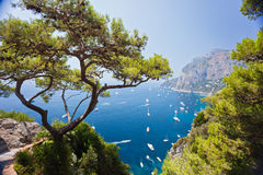 Capri harbor Royalty Free Stock Images