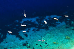 Capri-Insel stockfoto
