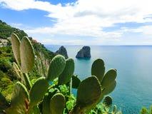 Capri island, Italy, near Naples. Royalty Free Stock Photography
