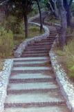 CAPRI, ITALIE, 1969 - un long escalier s'élève entre les pins de Capri photos libres de droits