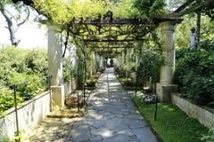 Capri. A splendid view of Capri gardens Royalty Free Stock Photo