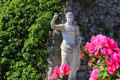 Capri statue Royalty Free Stock Photo