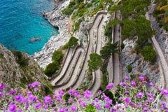 Capri, via Krupp, Italië Royalty-vrije Stock Afbeelding