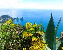 Capri wyspa, Włochy, blisko Naples Zdjęcie Stock