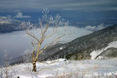 Caprice du ressort - dernière neige dans Sikhote-Alin du sud images stock