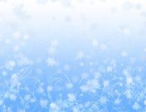 Capricieuze Sneeuwvlokken Stock Afbeeldingen