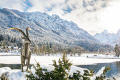 Capricorn on a sunny day at lake Jasna in Kranjska Gora. Sunny day at lake Jasna in Kranjska Gora guarded by statue of a Capricorn stock photos