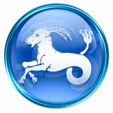 Capricorn zodiac button Royalty Free Stock Photography