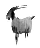 Capricorn. Zodiac sign. Ink illustration on white background. Royalty Free Stock Photography