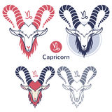 Capricorn zodiac sign set Stock Photos