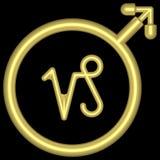 Capricornio 002 del zodiaco Imágenes de archivo libres de regalías