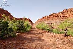 Caprock kanjon Arkivbild