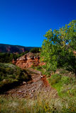Caprock kanjondelstatspark i Texas Royaltyfria Foton