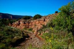 Caprock kanjondelstatspark i Texas Royaltyfri Fotografi